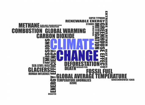 A Climate Change Word Collage: A Testimony to its Universality