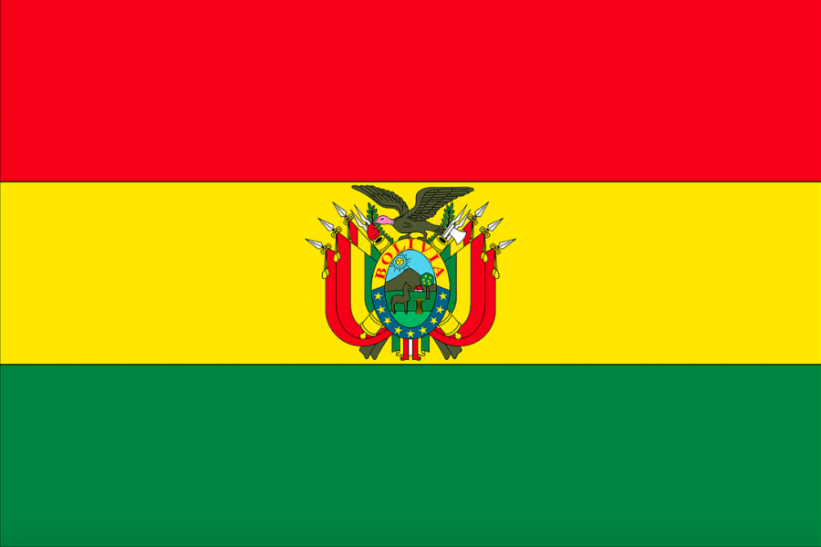 Bolivia+and+the+Ousting+of+Evo+Morales